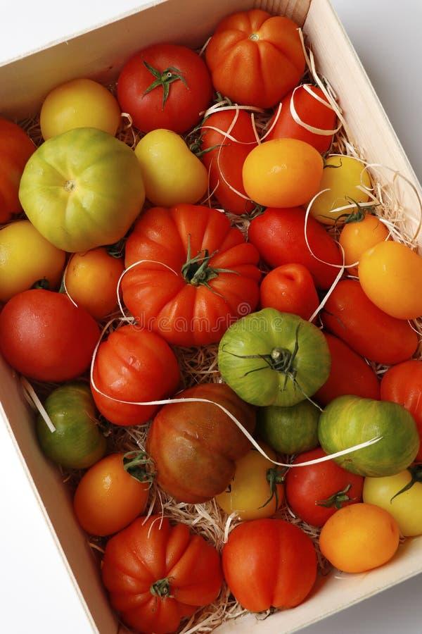 Томаты Heirloom также известные как томаты наследия стоковые фотографии rf