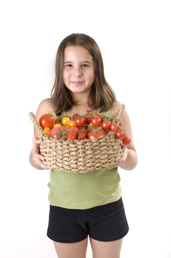 томаты holdin девушки корзины стоковые изображения rf