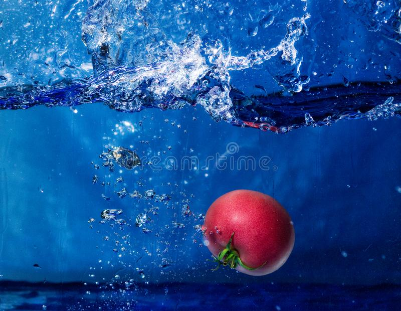 Томат падая в воду с выплеском стоковое изображение rf