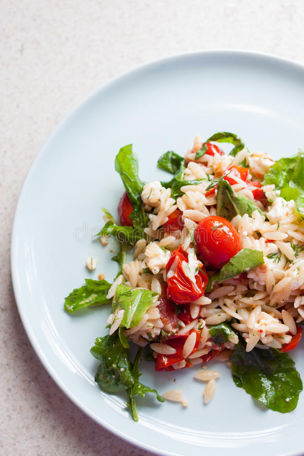 Томат сада свежие и салат orzo стоковые фотографии rf