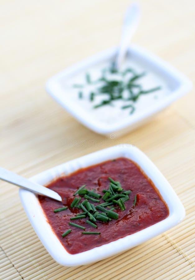 томат соусов чеснока стоковые фото