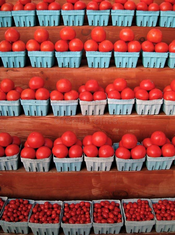 томат стойки стоковые фото