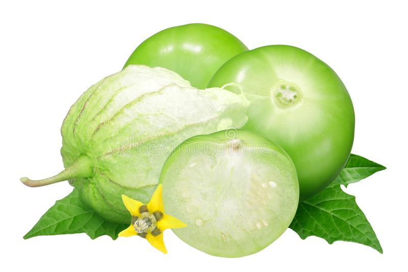 Томат шелухи Tomatillo, физалис стоковые фото