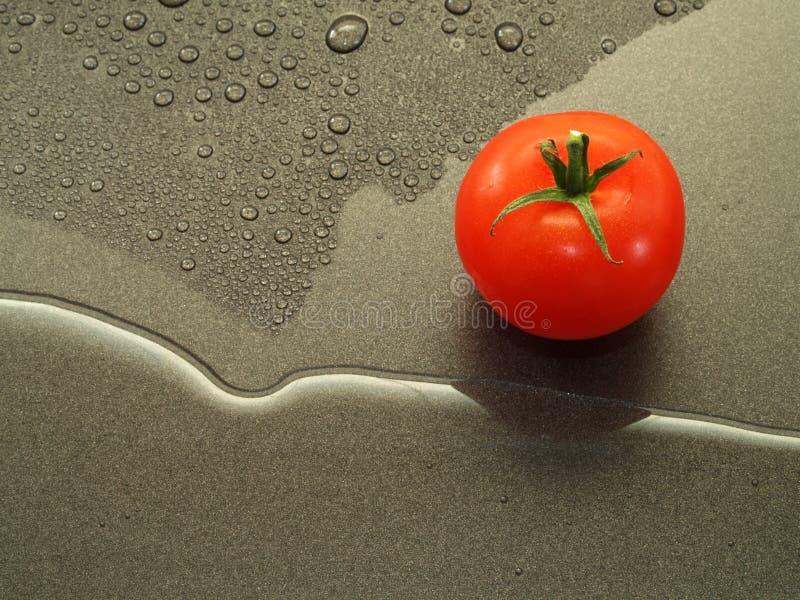 томат стоковые изображения rf