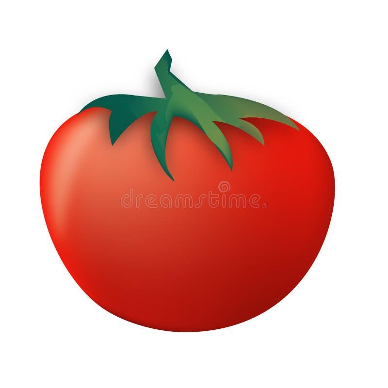 томат иллюстрация вектора