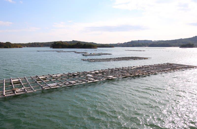Тому назад ландшафт острова залива и aqua жемчуга обрабатывая землю культивирование Shima Япония стоковое фото rf