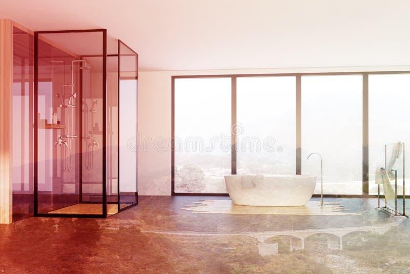 Тонизированные ванная комната, ливень и ушат просторной квартиры иллюстрация штока