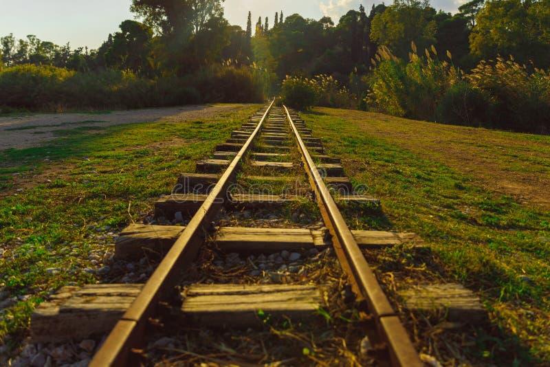 Тонкая железная дорога в лесе стоковое изображение