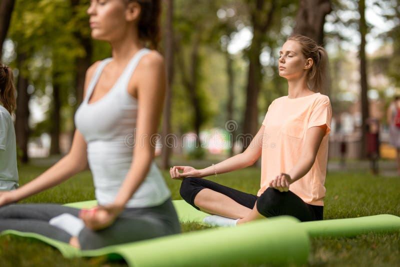 Тонкие девушки сидят в положениях лотоса делая йогу на циновках йоги на зеленой траве в парке на теплый день стоковое фото