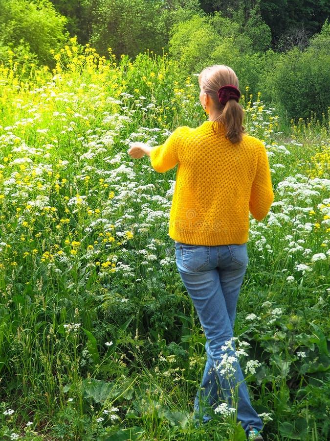 Тонкий путешественник женщины в желтой куртке для прогулки среди зеленой травы стоковые фото