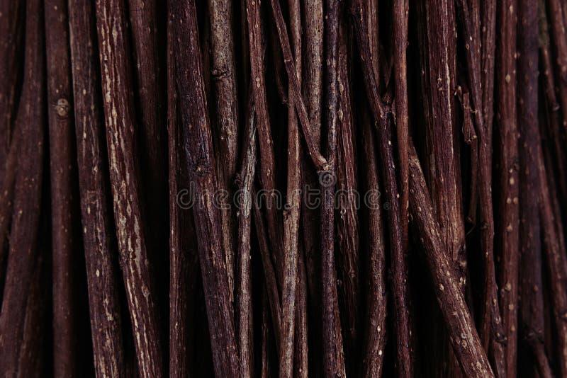 Тонкое коричневое темное деревянное взгляд сверху ветвей стоковые изображения rf