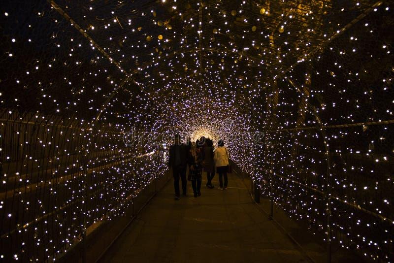 Тоннель с светами в Isfahan, Иране стоковое изображение rf