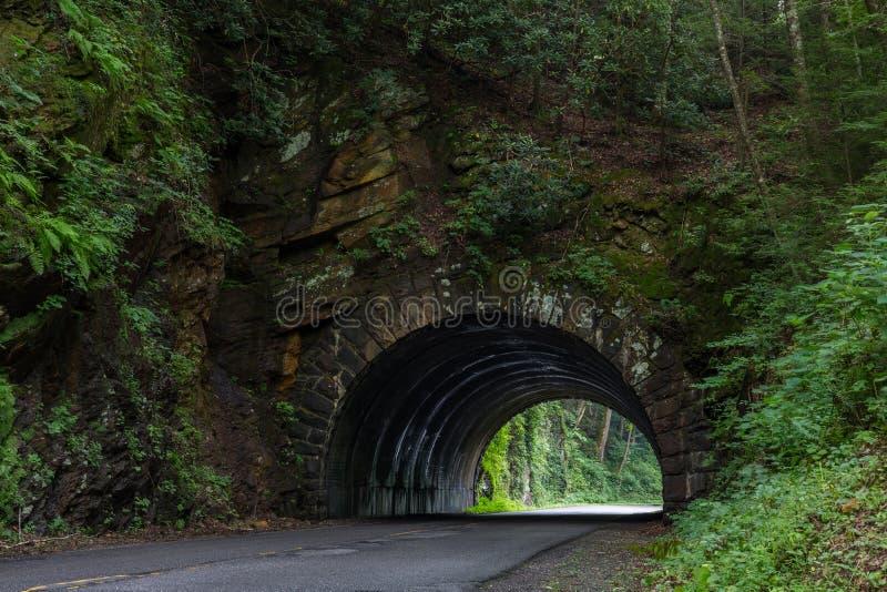 Тоннель в больших закоптелых горах стоковые фото