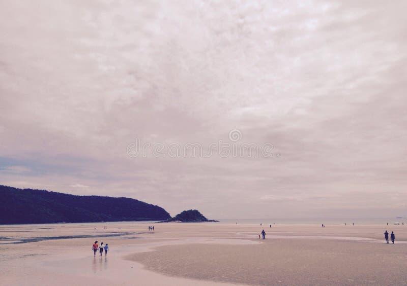 Тон sepia одиночества, заход солнца на пляже стоковое изображение rf
