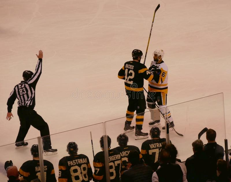 Топтыгины - конфронтация хоккея NHL пингвинов стоковые изображения rf