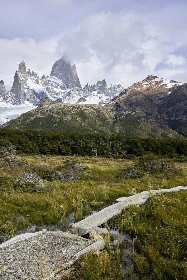 Топь и гора Fitz Роя в Патагонии стоковые фотографии rf