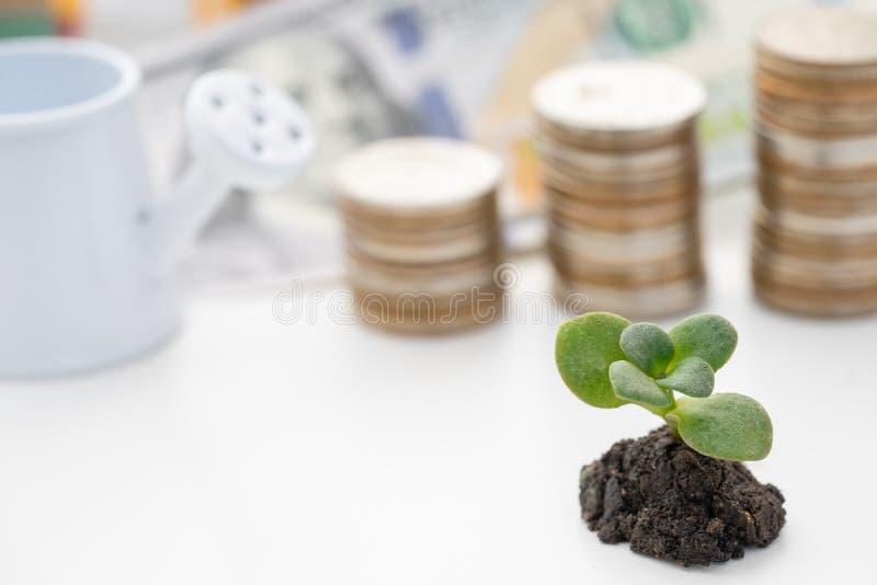 Торговать финансовый и концепция вклада расти стоковая фотография rf