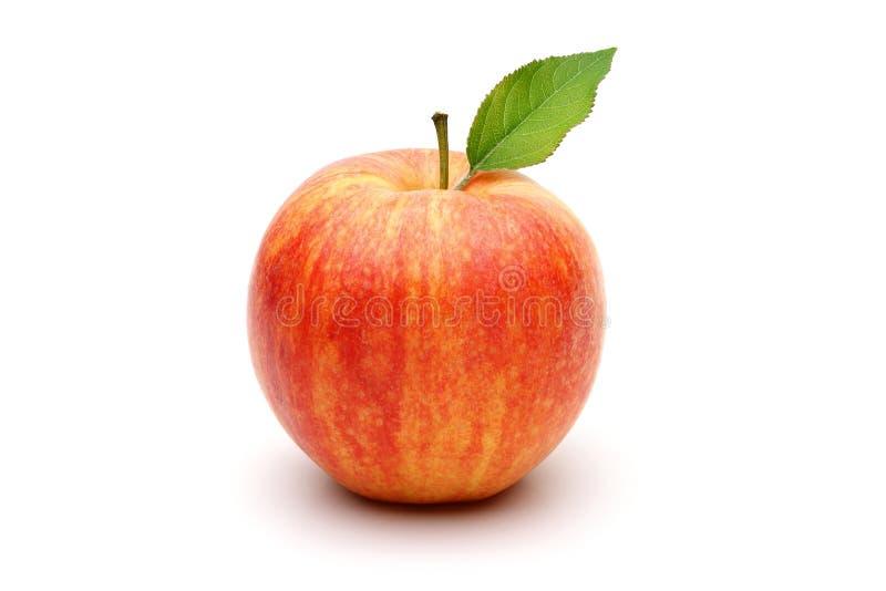 Торжественный Apple стоковая фотография rf
