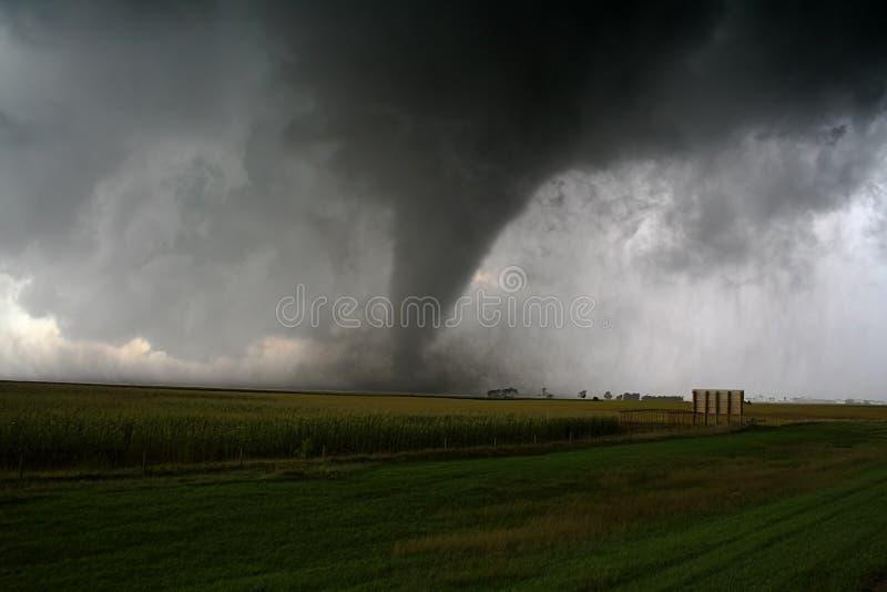 торнадо стоковая фотография