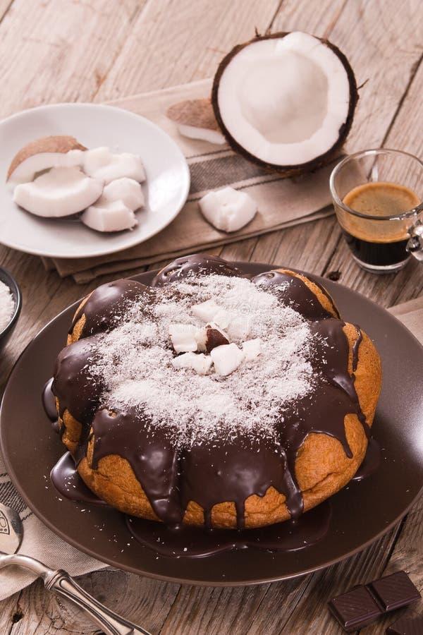Торт кокоса шоколада стоковое изображение