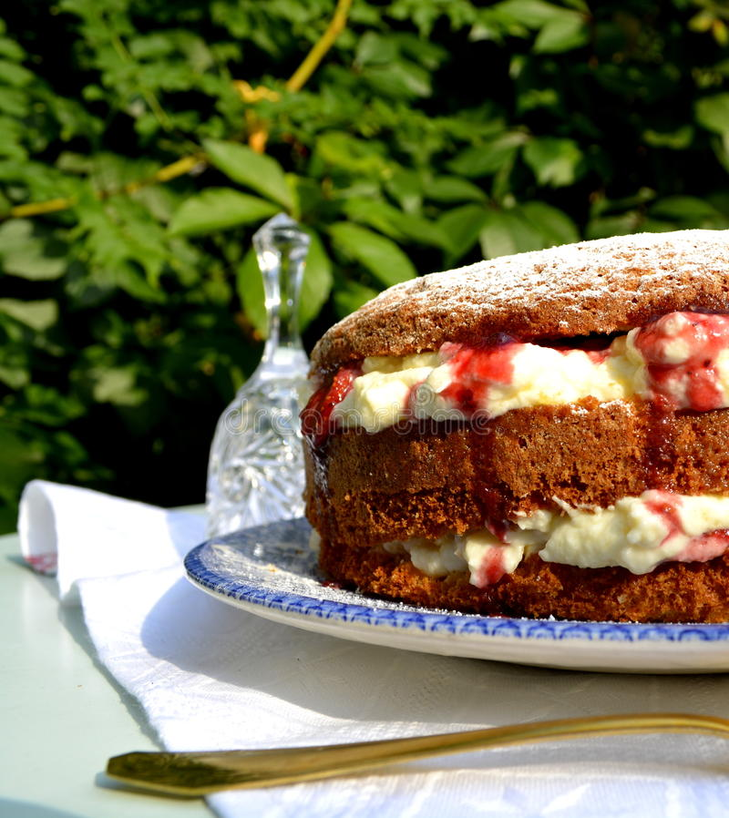 Торт колибри стоковая фотография rf