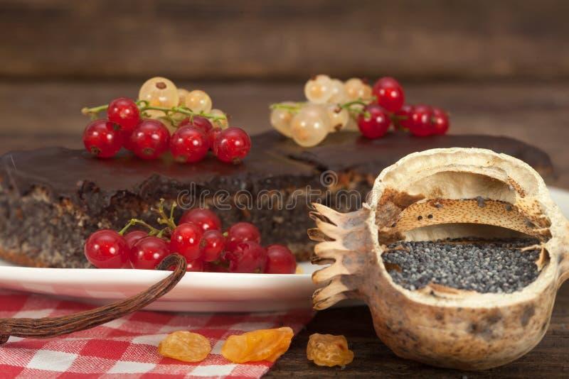 Торт макового семенени с изюминками и смородинами стоковые фотографии rf