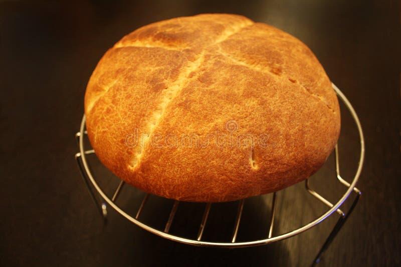 Торт на круглом охладителе стоковые изображения rf