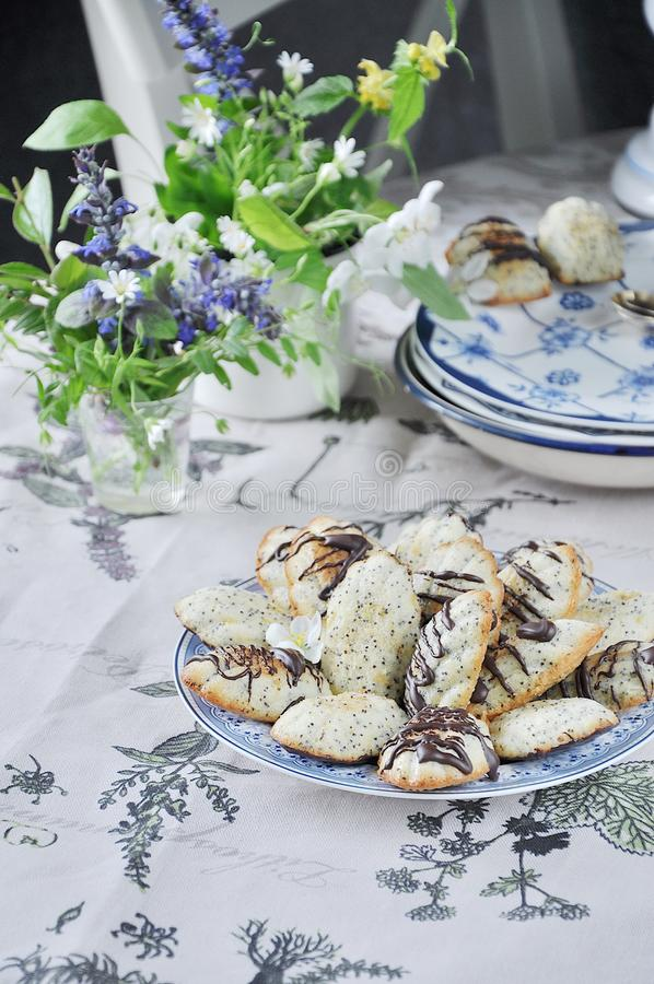 Торт печенья ` Madeleine ` с маковыми семененами весна жизни все еще стоковое фото