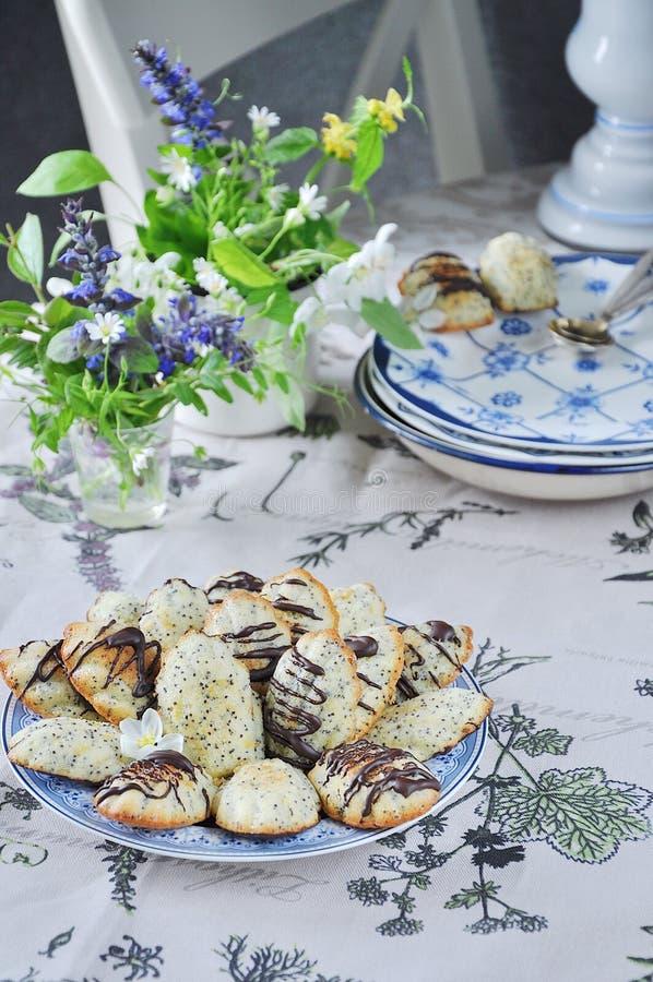 Торт печенья ` Madeleine ` с маковыми семененами весна жизни все еще стоковые фото