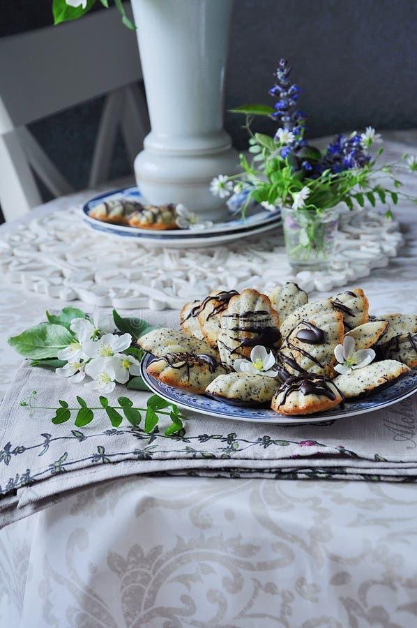 Торт печенья ` Madeleine ` с маковыми семененами весна жизни все еще стоковая фотография rf