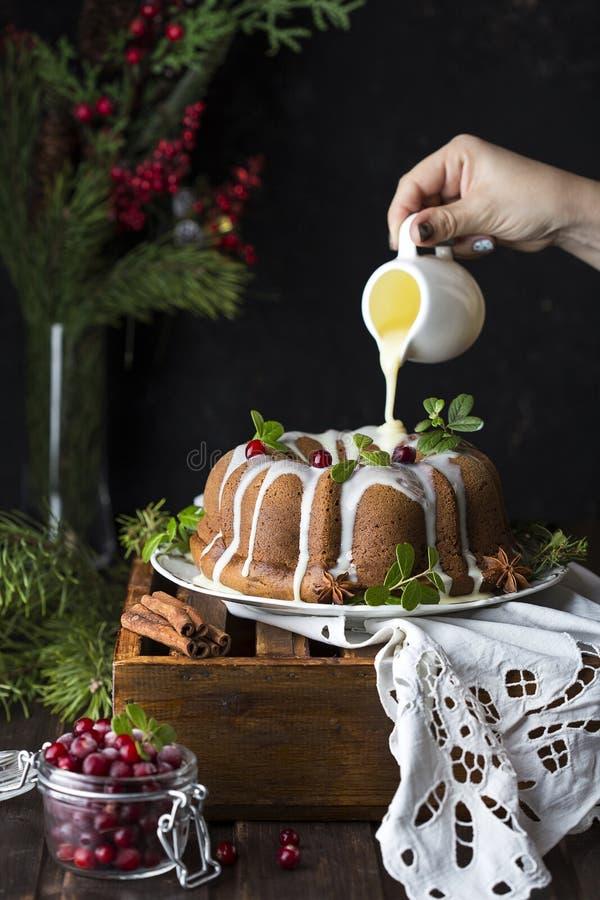 Торт рождества с клюквами стоковое фото rf