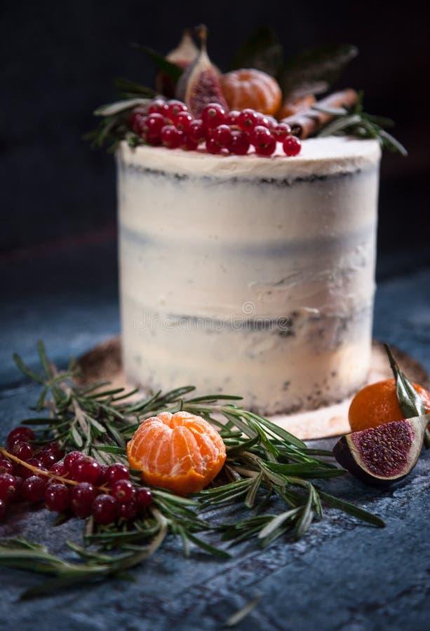 Торт рождества с плодоовощами и ягодами стоковое фото