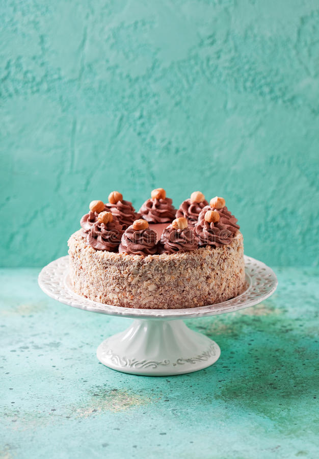 Торт фундука меренги с сливк шоколада стоковое фото