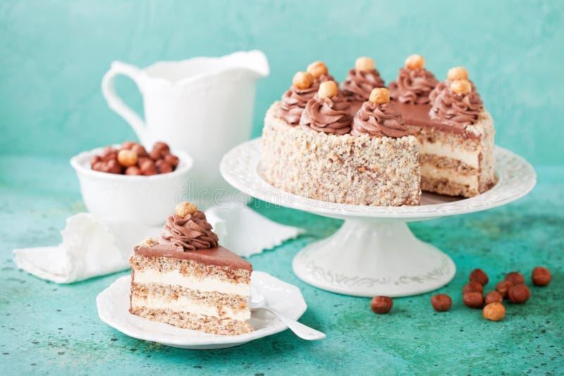 Торт фундука меренги с сливк шоколада стоковые фото