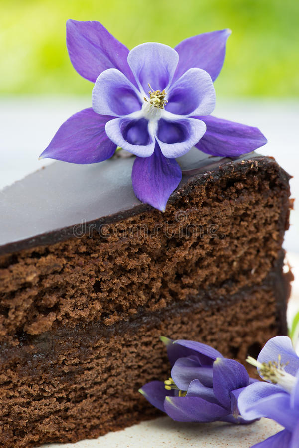 Download Торт шоколада стоковое изображение. изображение насчитывающей замороженность - 41662313