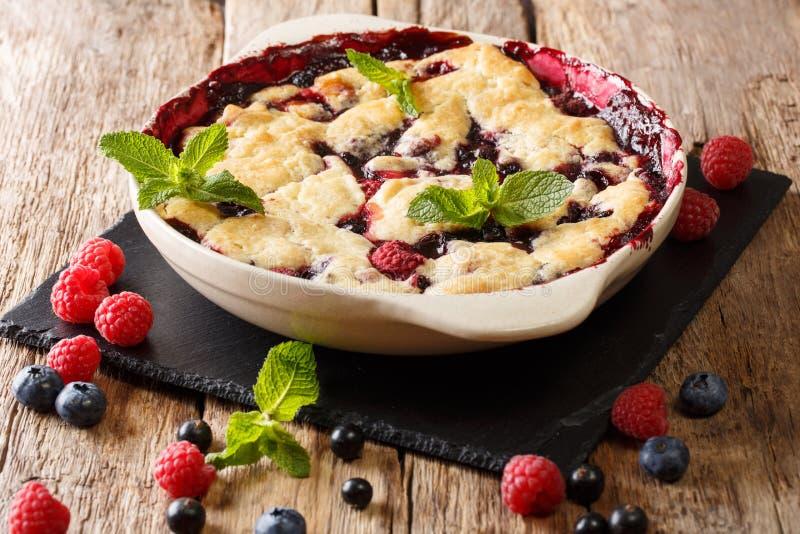Торт ягоды лета с ягодами, смородинами и blueberri поленики стоковые изображения