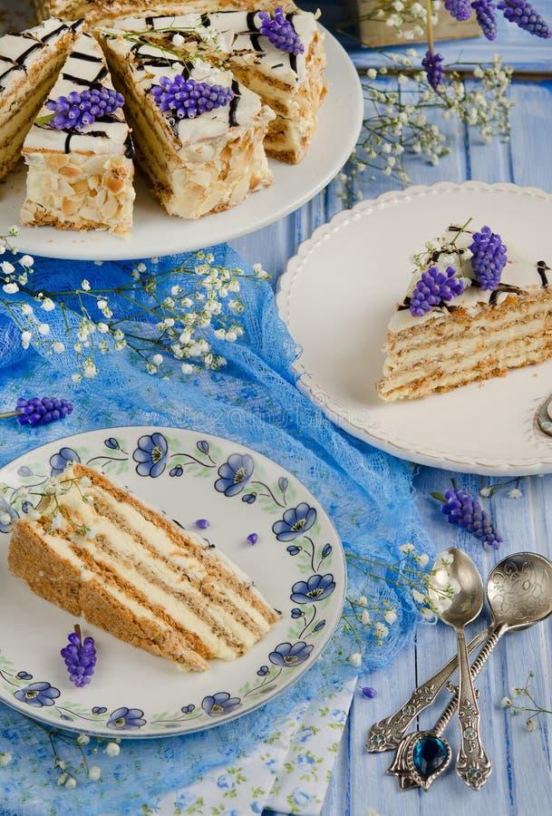 Торт Esterhazy стоковое фото
