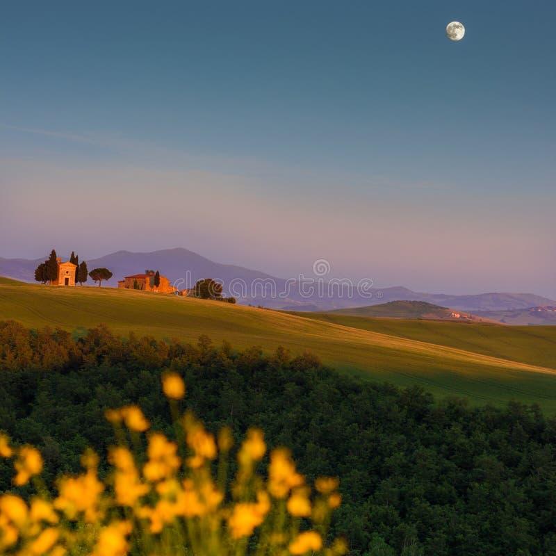 Тоскана, ландшафт весны стоковые фото