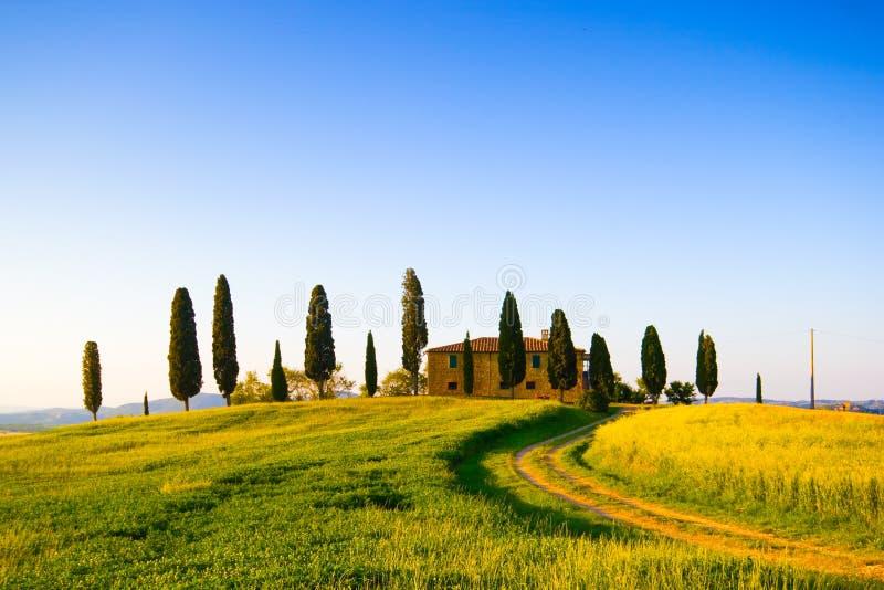 Тоскана, ландшафт весны стоковая фотография rf