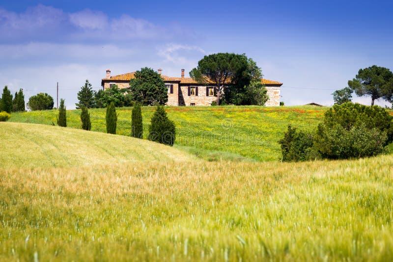 Тоскана, ландшафт весны стоковая фотография