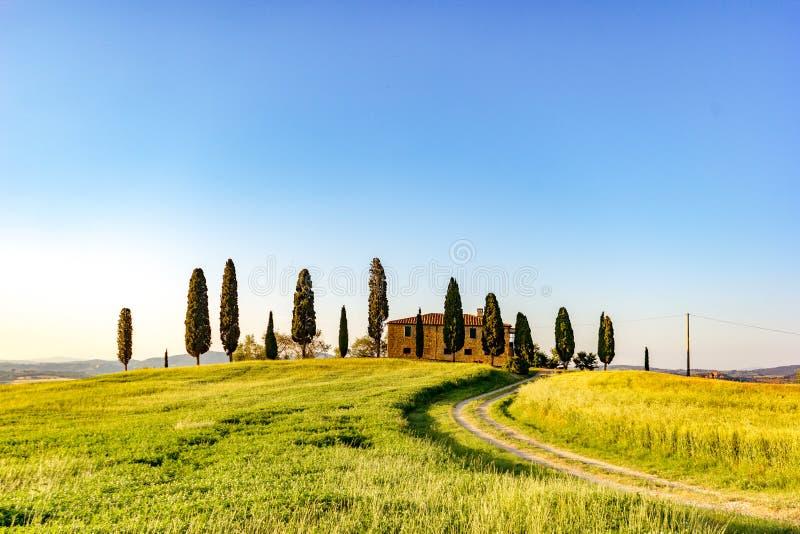 Тоскана, ландшафт весны стоковые изображения rf