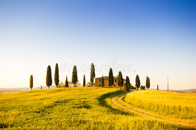 Тоскана, ландшафт весны стоковое фото rf