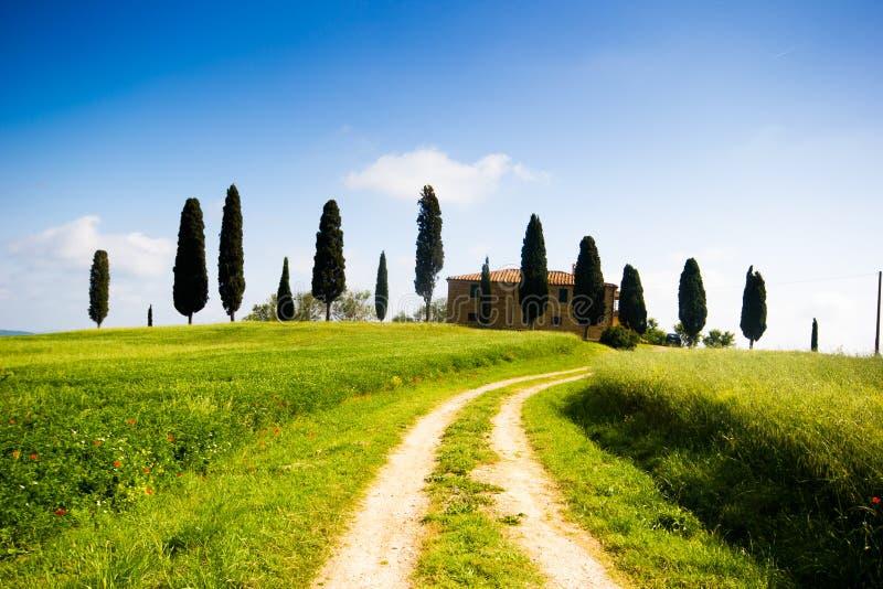 Тоскана, ландшафт весны стоковое изображение
