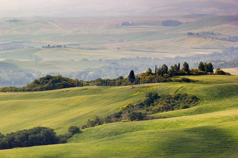 Тоскана, ландшафт весны стоковое изображение rf