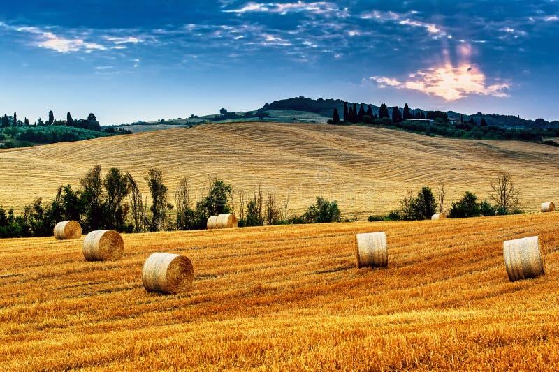 Тоскана - Италия стоковые фото