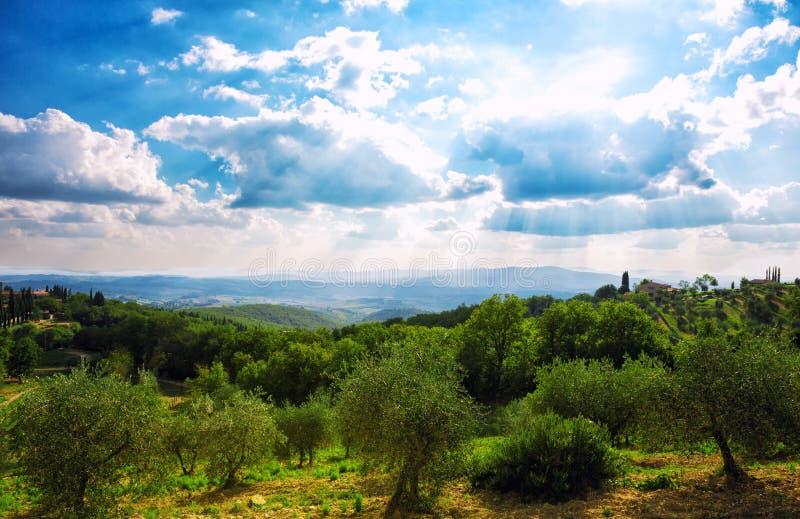 Тоскана, итальянский сельский ландшафт стоковое изображение rf