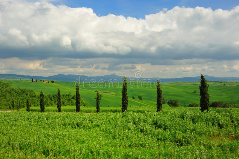 Тоскана стоковая фотография