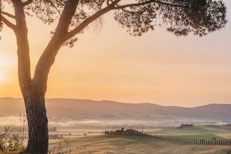 Тосканский дом в холмах среди кипарисов стоковая фотография rf
