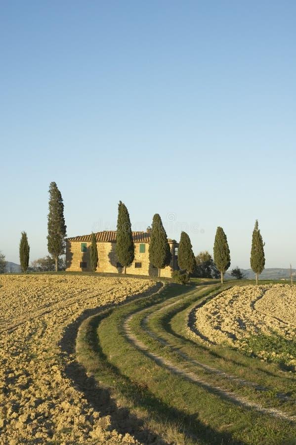 Тосканское lanscape стоковое изображение rf