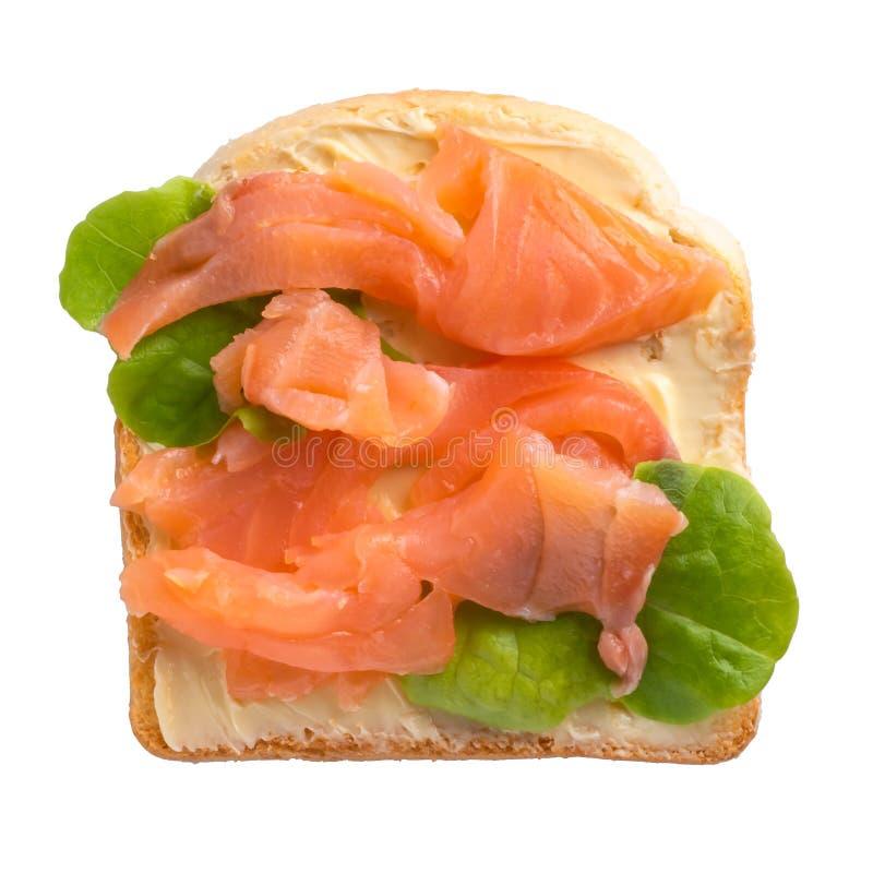 Тост с маслом и семгами и зеленым салатом на белой предпосылке стоковые изображения